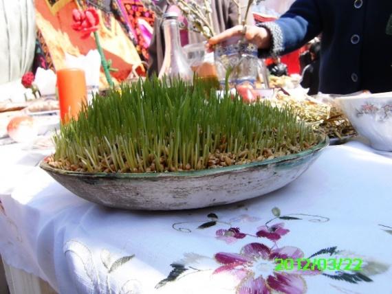 Проращенные зерна пшеницы для Сумалак