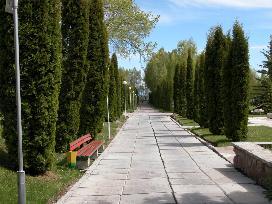 Аллея. Природа санаторий Аврора Иссык-Куль фото