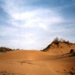 Пустыня Кизыл-Кум